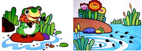 小蝌蚪找妈妈的故事,小蝌蚪的成长过程